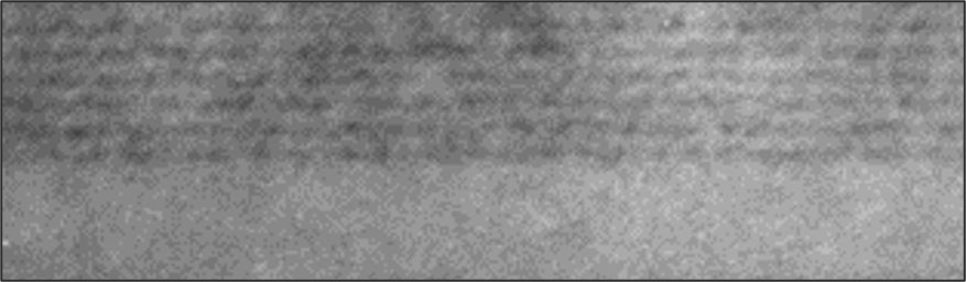 Microscopic image of MST material